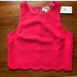 Tops - Scalloped pink blouse